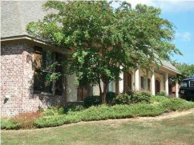 Rankin County Commercial For Sale: 427 Katherine Dr
