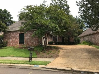 Ridgeland Single Family Home For Sale: 706 Versaille Dr