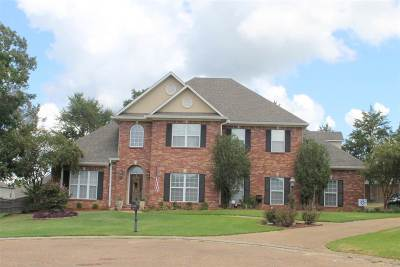 Hinds County Single Family Home For Sale: 104 Woodland Cv