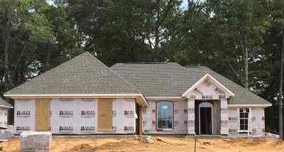 Brandon Single Family Home For Sale: 664 Conti Dr