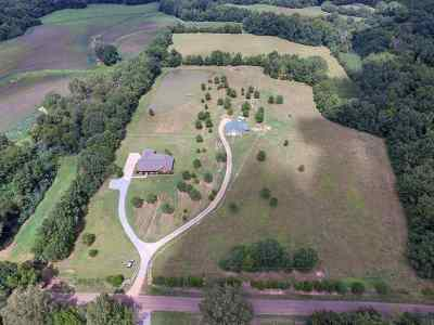 Canton Single Family Home For Sale: 578 Rankin Rd
