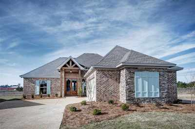 Flowood Single Family Home For Sale: 120 Amethyst Dr
