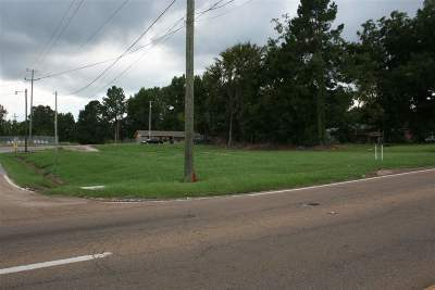 Neshoba County Residential Lots & Land For Sale: 348 Main St