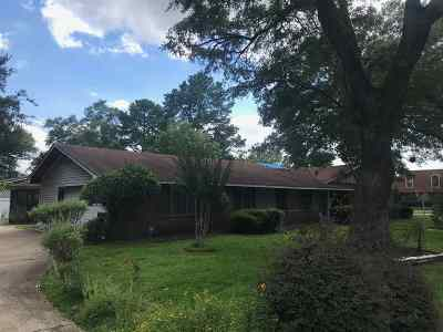 Hinds County Single Family Home For Sale: 627 Newland St