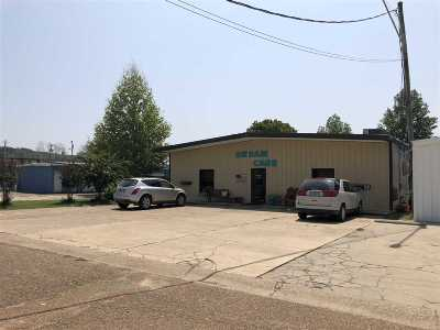 Yazoo City MS Commercial For Sale: $235,000