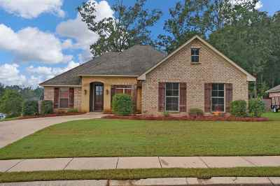 Pearl Single Family Home For Sale: 907 Timberton Dr