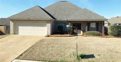 Canton Single Family Home For Sale: 156 Harvey Cir