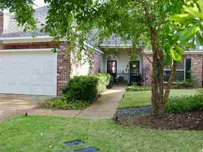 Madison MS Single Family Home Contingent/Pending: $285,000