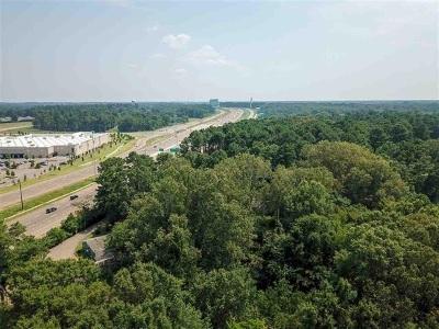 Madison County Commercial For Sale: 159 Lakeview Dr