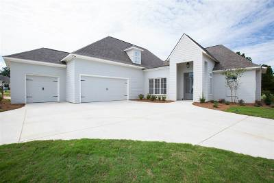 Madison MS Single Family Home For Sale: $440,000