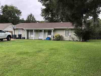 Clinton Single Family Home For Sale: 213 Dahaja Cir