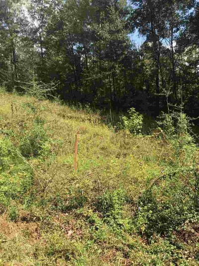 Mt. Olive MS Residential Lots & Land For Sale: $15,990