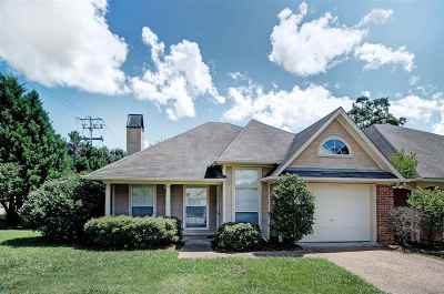 Ridgeland Single Family Home For Sale: 301 Creston Ct