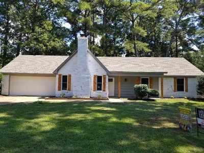 Brandon Single Family Home Contingent/Pending: 123 Bellegrove Blvd