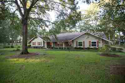 Brandon Single Family Home For Sale: 601 Audubon Point Dr