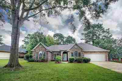 Single Family Home For Sale: 206 Ramblewood Dr