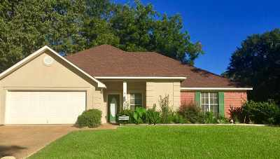 Florence Single Family Home For Sale: 209 Shady Pecan Dr