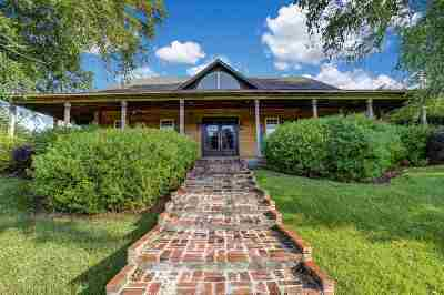 Hinds County, Madison County, Rankin County Single Family Home For Sale: 178 Lake Hill Dr