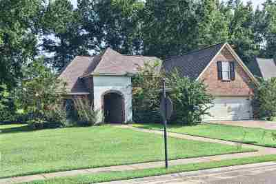 Rankin County Single Family Home For Sale: 512 Orchard Brook Ct