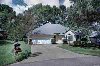 Hinds County Single Family Home For Sale: 14 Parkview Dr