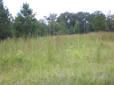 Brandon Residential Lots & Land For Sale: 125 Breckenridge Dr