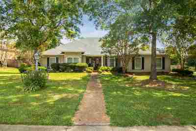 Ridgeland Single Family Home For Sale: 278 Red Eagle Cir