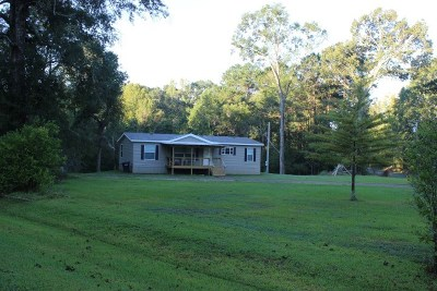 Hinds County Mobile/Manufactured For Sale: 811 Hudson Dr