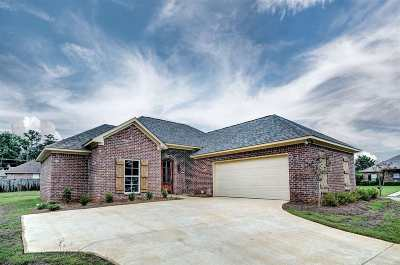 Rankin County Single Family Home For Sale: 300 Creek Ct