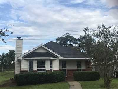 Rankin County Single Family Home For Sale: 204 Village Cv