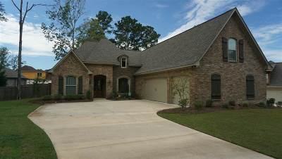 Rankin County Single Family Home For Sale: 206 Iron Horse Station