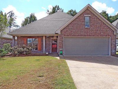 Clinton Single Family Home For Sale: 209 Seminole Ct