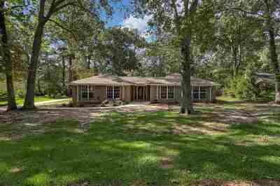 Brandon Single Family Home Contingent/Pending: 502 Audubon Point Dr