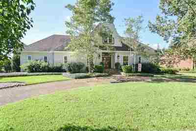 Brandon Single Family Home For Sale: 171 Northwind Dr