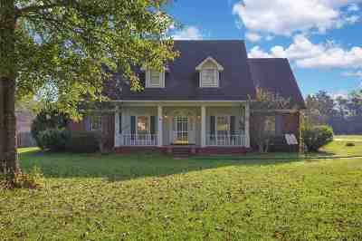 Hinds County Single Family Home For Sale: 276 Parks Rd