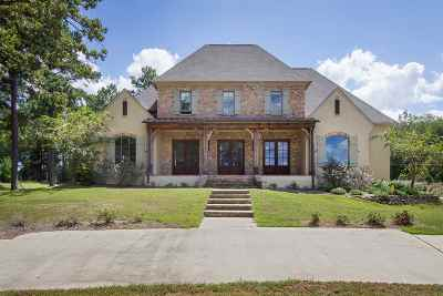 Madison Single Family Home For Sale: 440 Johnstone Dr