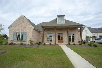 Madison Single Family Home For Sale: 101 Venice Way