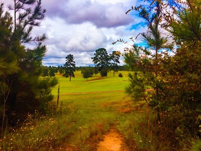 Carthage MS Residential Lots & Land For Sale: $15,000