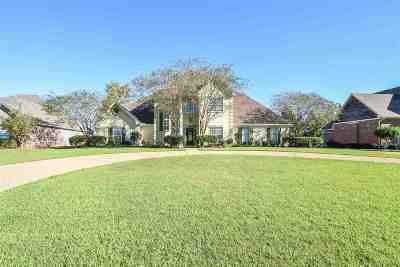 Brandon Single Family Home For Sale: 511 Castlewoods Blvd