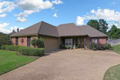 Brandon Single Family Home Contingent/Pending: 703 Castlewoods Blvd