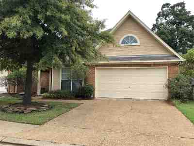 Ridgeland Single Family Home For Sale: 303 Creston Ct