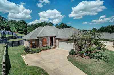 Brandon Single Family Home For Sale: 529 Glensview Dr