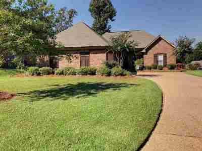 Brandon Single Family Home For Sale: 445 Pinebrook Cir