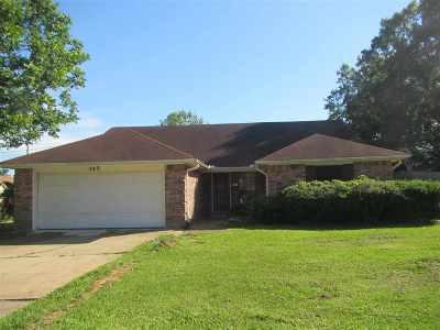 Byram Single Family Home For Sale: 345 Gary Daniels Dr