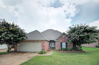Pearl Single Family Home For Sale: 563 Clubhouse Dr