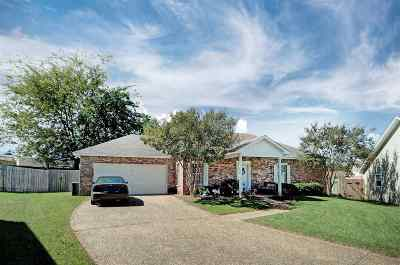 Brandon Single Family Home For Sale: 122 Cape Charles