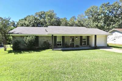 Ridgeland Single Family Home For Sale: 213 Walnut St