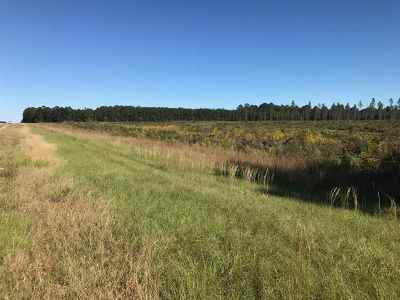 Residential Lots & Land For Sale: Hwy 25 Dr