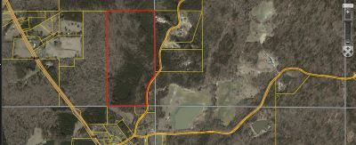 Residential Lots & Land For Sale: Pea Ridge Rd