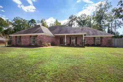 Brandon Single Family Home For Sale: 153 Stratford Dr