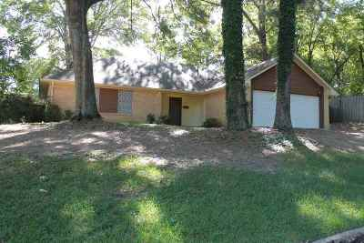 Jackson Single Family Home For Sale: 1243 Ferntree Dr